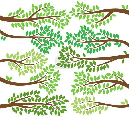Illustration pour Collection vectorielle de silhouettes de branches d'arbres feuillus - image libre de droit