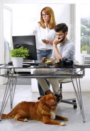 Photo for Young art director working at pet-friendly workplace. Handsome businessman bringing his pet to work while sitting at desk in front of computer and working online while consulting with senior editor. - Royalty Free Image