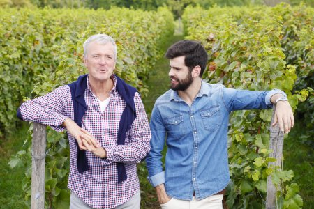 winemakers  standing  and consulting