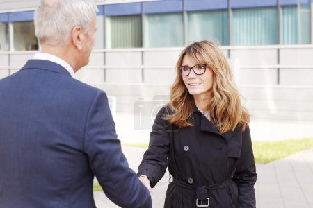 Businesswoman shaking hands with man
