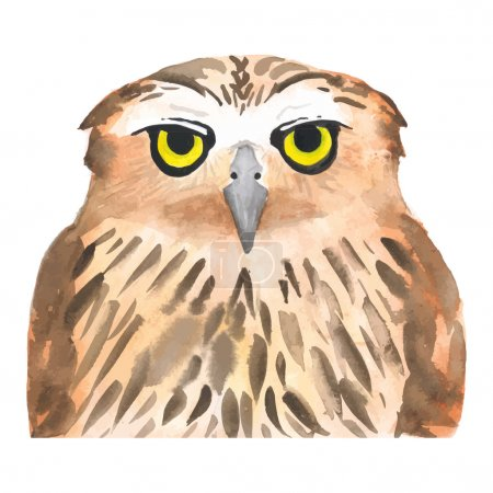 Owl bird. Watercolor, vector