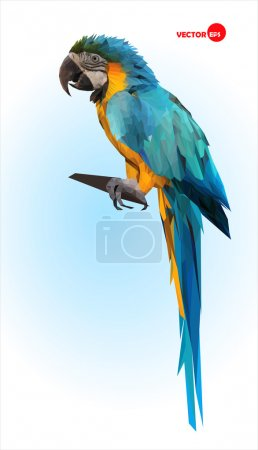 Blue and yellow parrot, macaw. Brazilian Ara.  Big wild tropical bird, Parrot sitting on a wooden branch on a blue blurred background. Animals in the zoo.