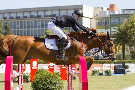 Horse jumping - Pedro Veniss