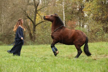 Beautiful young girl with prancing horse