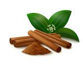 Cinnamon on white background