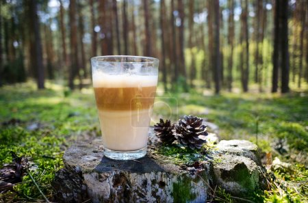 Coffee in the forest