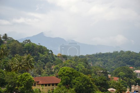 Arial View Kandy