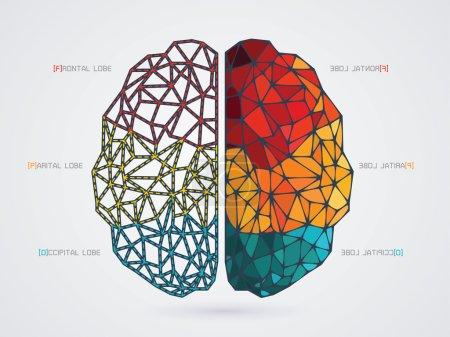 Illustration pour Illustration vectorielle d'une icône du cerveau - image libre de droit