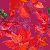Seamless pattern  with poinsettia plant-01