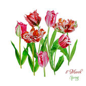 Background with tulips4-03