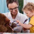 Child auscultating teddy bear at pediatrician's of...