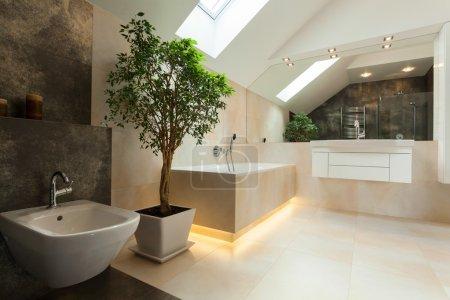 Photo pour Intérieur de la salle de bains moderne dans Maison Neuve - image libre de droit