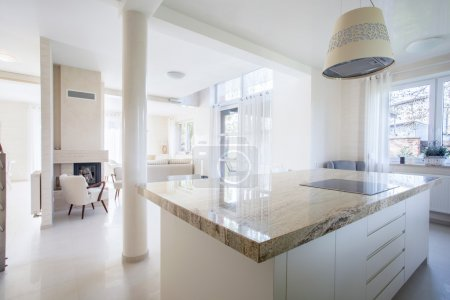 Luxury house with marble elements