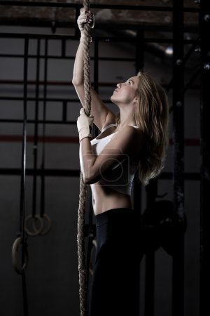 Photo for Crossfit training - fitness woman during rope climbing - Royalty Free Image