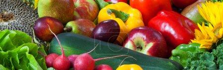 Photo pour Couleur fruits et légumes mélangés - panorama - image libre de droit