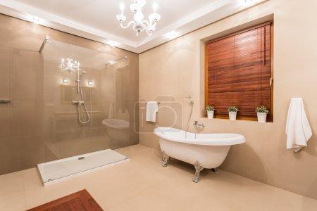 Photo pour Grosse chaude toilette avec douche en verre - image libre de droit