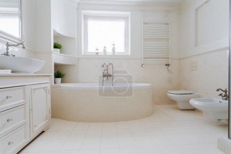 Elegant spacious bathroom