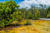 Khao Pra Bang Khram Wildlife Sanctuary, way to Emerald Pool aka Sa Morakot, tourist destination. National Park, Krabi, Thailand. Green tropical forest, Southeast Asia. Yellow and orange soil