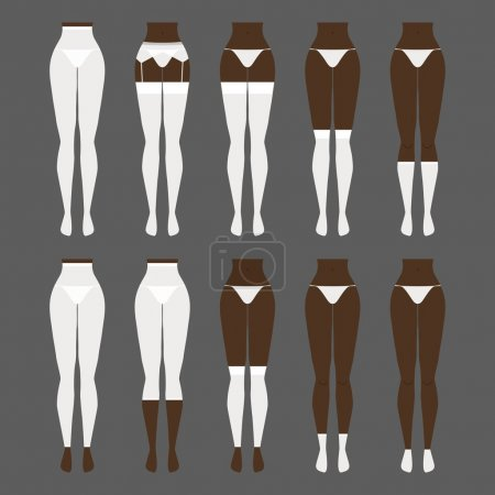 Vector illustration. Hosiery elements - tights, stockings, golfs, leg warmers, socks. Woman lingerie icons set. Silhouettes of female underwear.