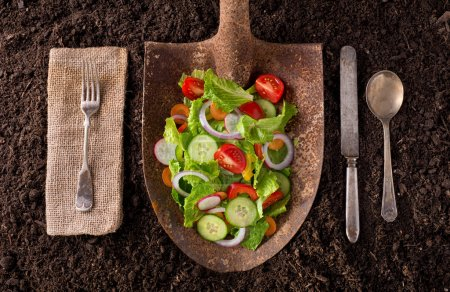 Photo for Organic farm to table healthy eating concept on soil background. - Royalty Free Image