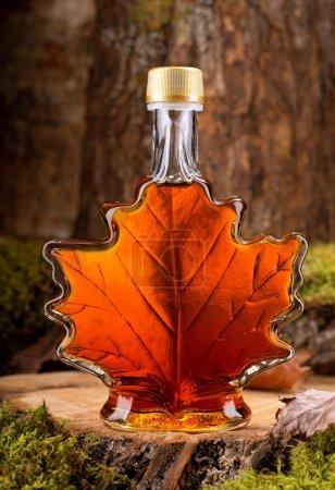 Photo pour Une bouteille de sirop d'érable délicieux dans un cadre de forêt feuillue . - image libre de droit