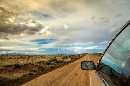 Smiling man driving through wilderness on dirt road
