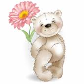 Teddy bear and red chamomile on white background