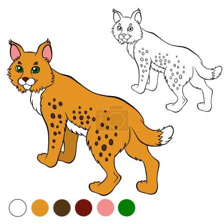 Illustration pour Coloriage. Couleur moi : lynx. Beau lynx mignon se tient et sourit . - image libre de droit