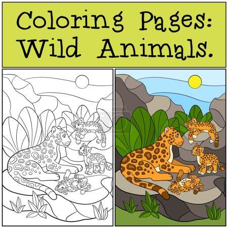 Illustration pour Coloriages : Animaux sauvages. Mère jaguar avec ses petits petits mignons sur les pierres . - image libre de droit