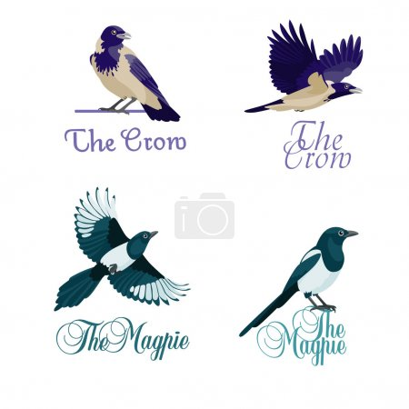 Crows and magpies as company symbols
