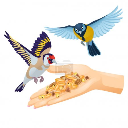 Goldfinch and titmouse are flying over hand with cereals