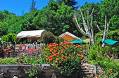 California: flowers and trees at Nephente restaurant,  a very famous restaurant in Big Sur since 1949