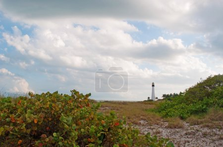 Cape Florida Lighthouse, beach, vegetation, Bill Baggs Cape Florida State Park, protected area, Key Biscayne, Miami, Miami Beach