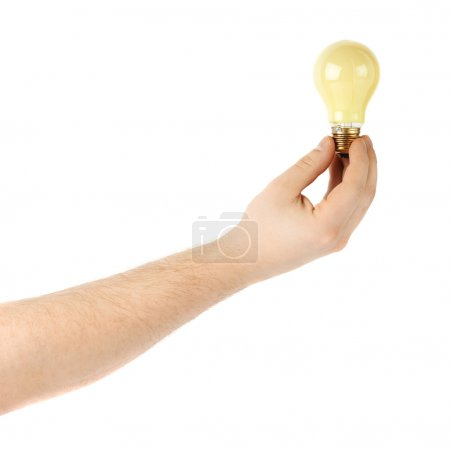 Hand holding a bulb, composition isolated over the white background