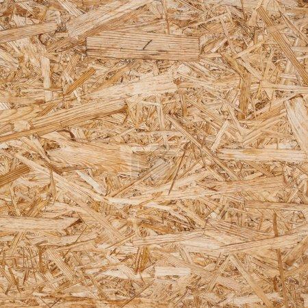 Pressed wood shavings