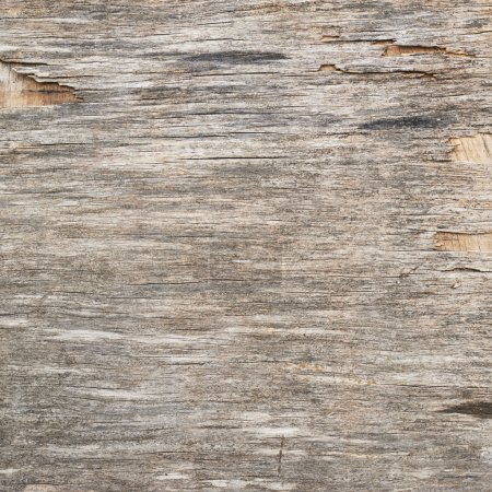 Old wooden plywood