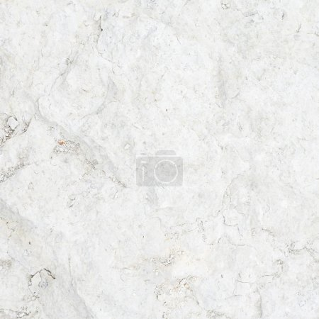 Limestone surface fragment