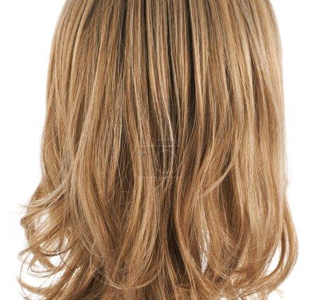 Hair fragment