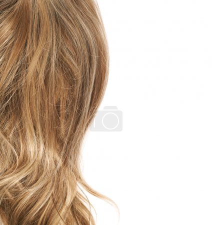 Closeup hair texture
