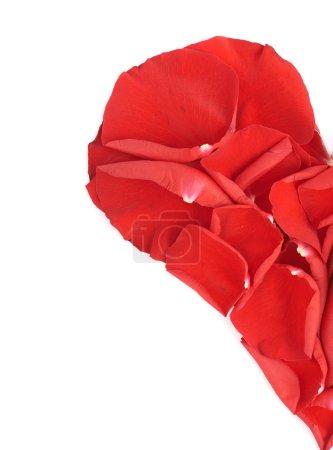 Half of a heart made of petals