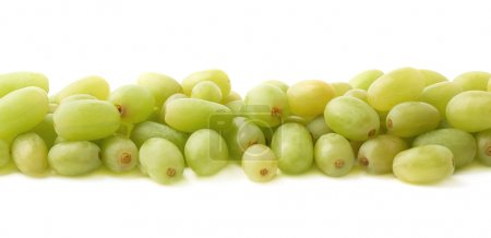 Line made of white grapes