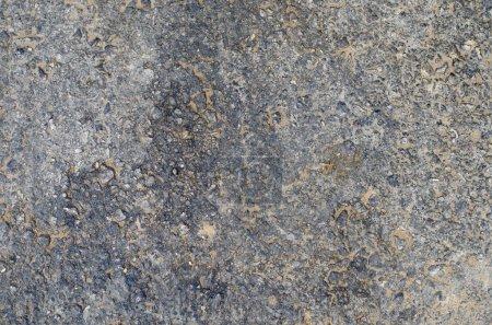 Cemented wall or asphalt wallpaper