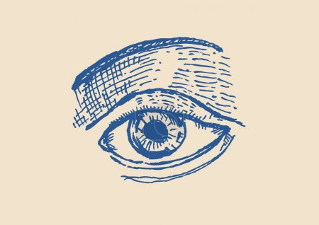 Hand Sketch of an Eye  with Brows Pen and Ink Style. Editable Clip Art.