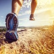 Outdoor cross-country running in summer sunshine c...