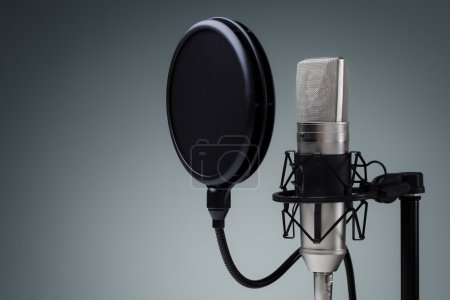 Studio microphone and pop shield on mic