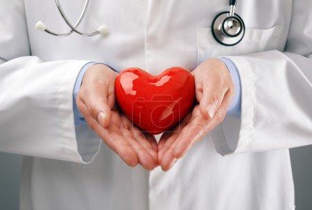 Photo pour Médecin ou cardiologue tenant le cœur avec des soins dans les mains concept pour les soins de santé et le diagnostic médical pouls cardiaque test - image libre de droit
