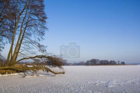 Frozen lake view