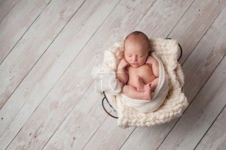 Photo pour Portrait d'un nouveau-né de sept jours dormant dans un panier métallique sur un plancher de bois blanchi à la chaux . - image libre de droit