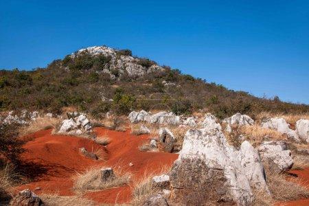 Yunnan Haifeng wetland edges Red Land