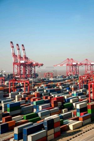 Shanghai Yangshan Deepwater economic FTA container terminal cranes crane towers